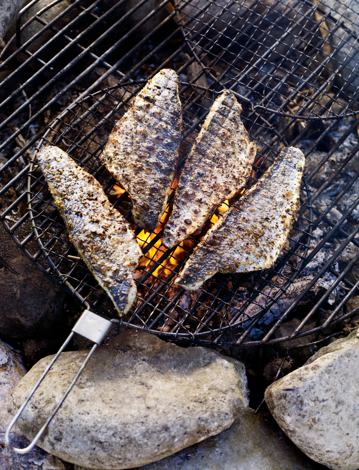 Campfire Roast Fish With Lemon And Fennel Recipe