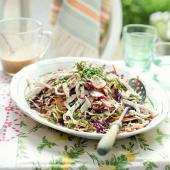 Japanese chicken coleslaw with ginger almond dressing