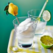 Gin and tonic sorbet with lime