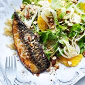 Mackerel with fennel and orange salad