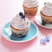 Blueberry cheesecake cupcakes