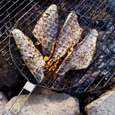 Campfire roast fish with lemon and fennel
