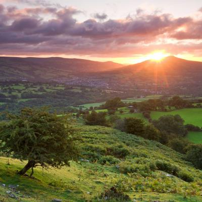 Staycation: Gliffaes country house hotel, Brecon Beacons