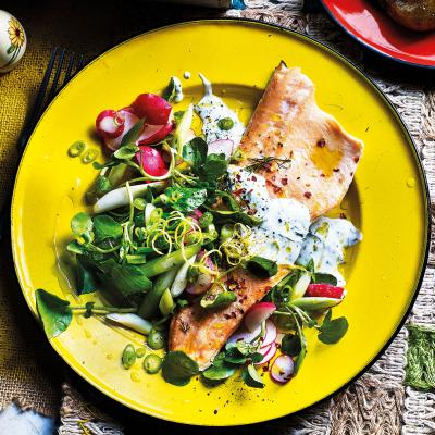 Radish, spring onion and watercress salad with baked trout