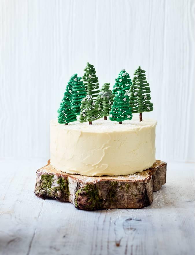 Sainsbury S Magazine Christmas Cake Recipe