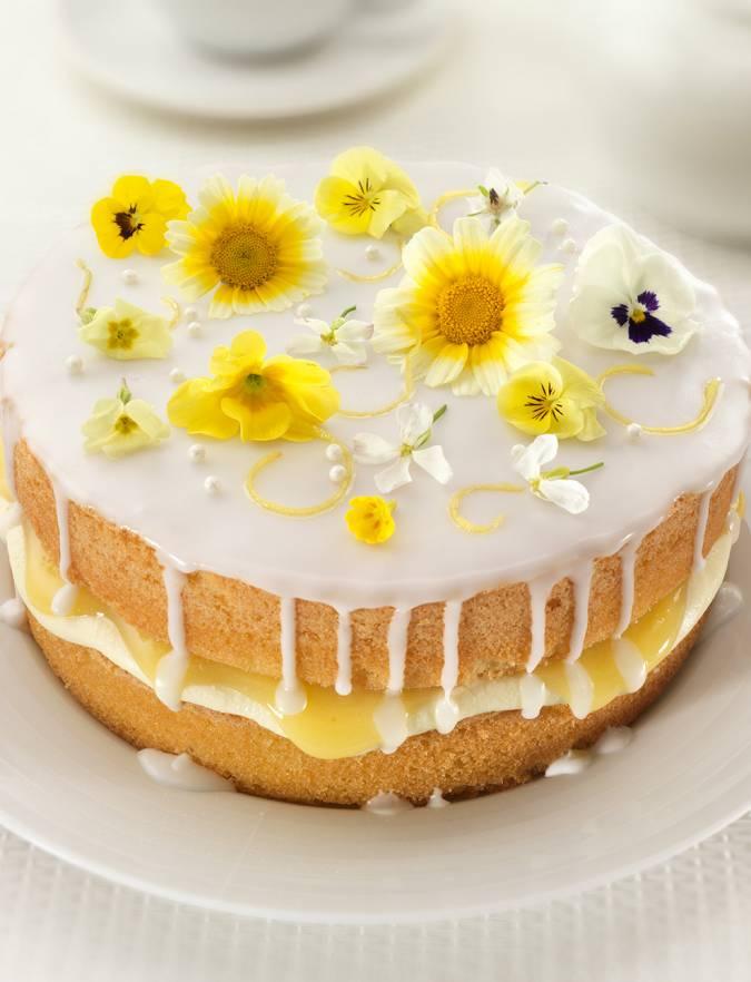 Lemon And Elderflower Drizzle Cake Sainsbury S Magazine