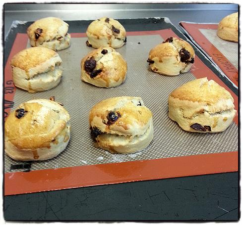 lords-scones-from-the-oven.jpg