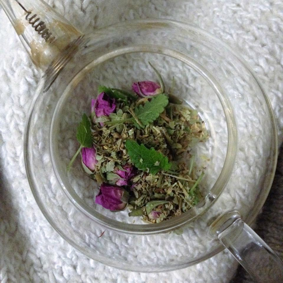 Wild-rose,-lime-flower-and-lemon-balm-tea