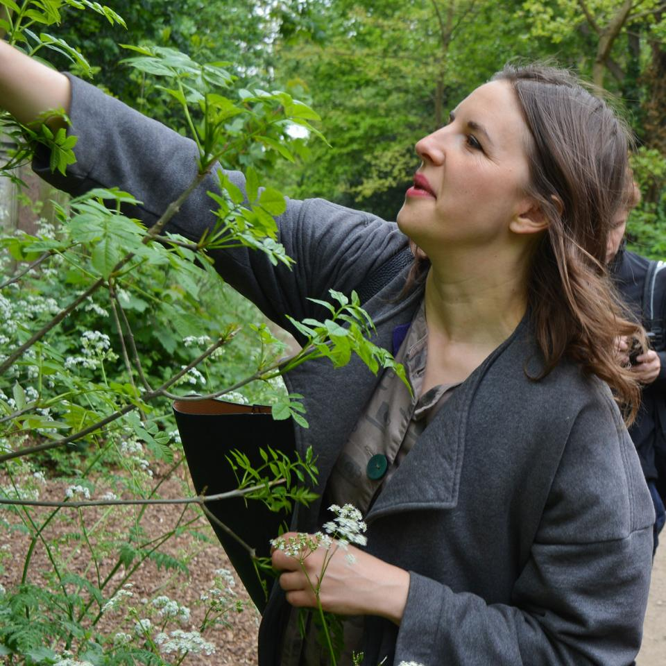Foraging-in-Abney-Gardens-Hackney